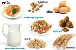 Основные аллергенные продукты