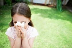 Аллергия на березовую пыльцу у детей