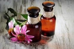 Эфирные масла из эхинацеи