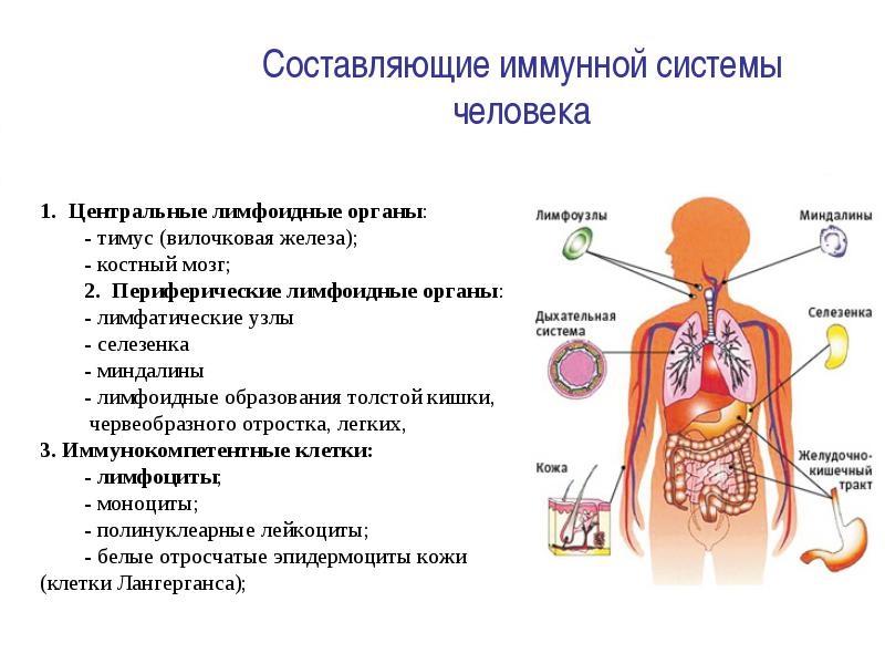 справочная по работе в городе москва