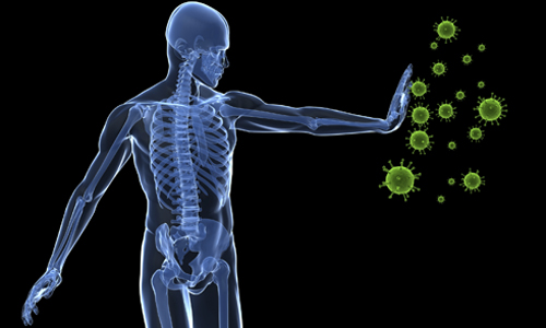 Иммунная защита организма человека