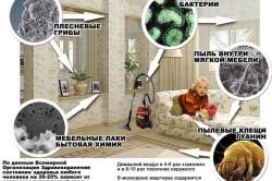 Источники аллергии в квартире