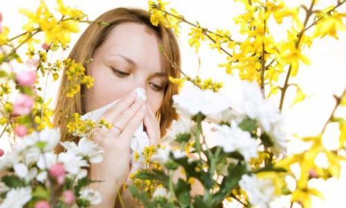 Аллергия вокруг глаз лечение